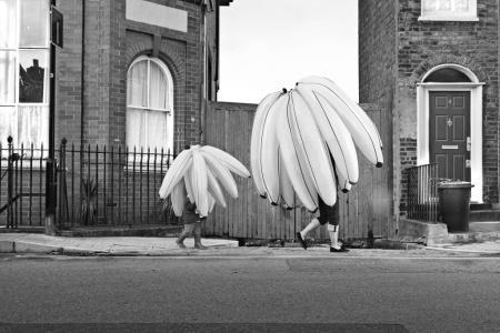 bunches_of_bananas_walking_along_the_road